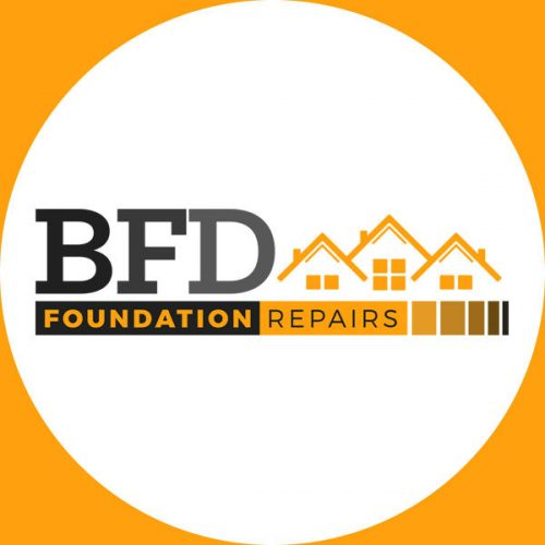 BFD Foundations (Profile Picture)