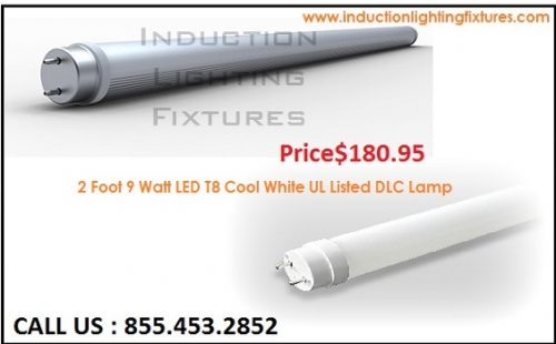 2 Foot 9 Watt LED T8 Cool White UL Listed DLC Lamp